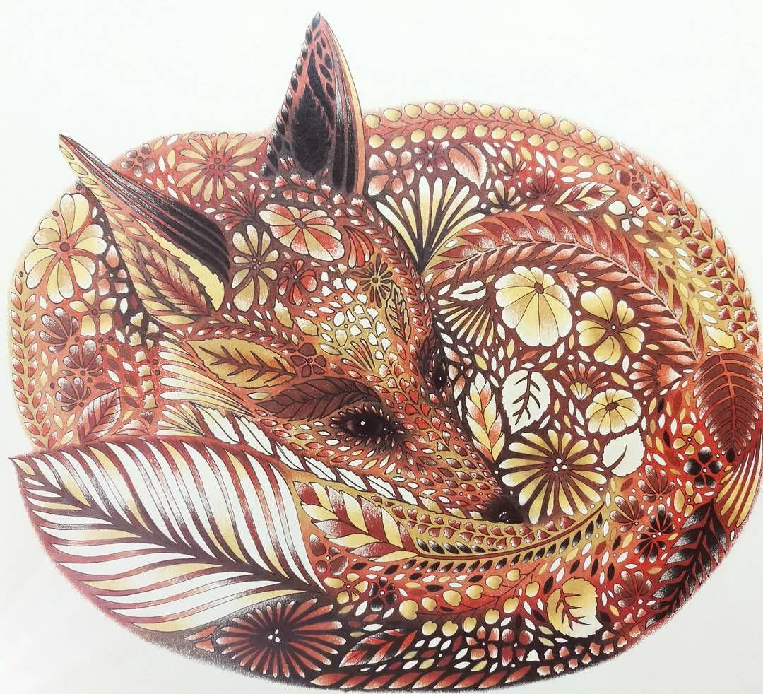 Fox From Millie Marottas Animal Kingdom