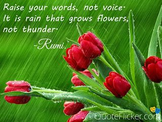 Quotes Collection: Rumi Quotes