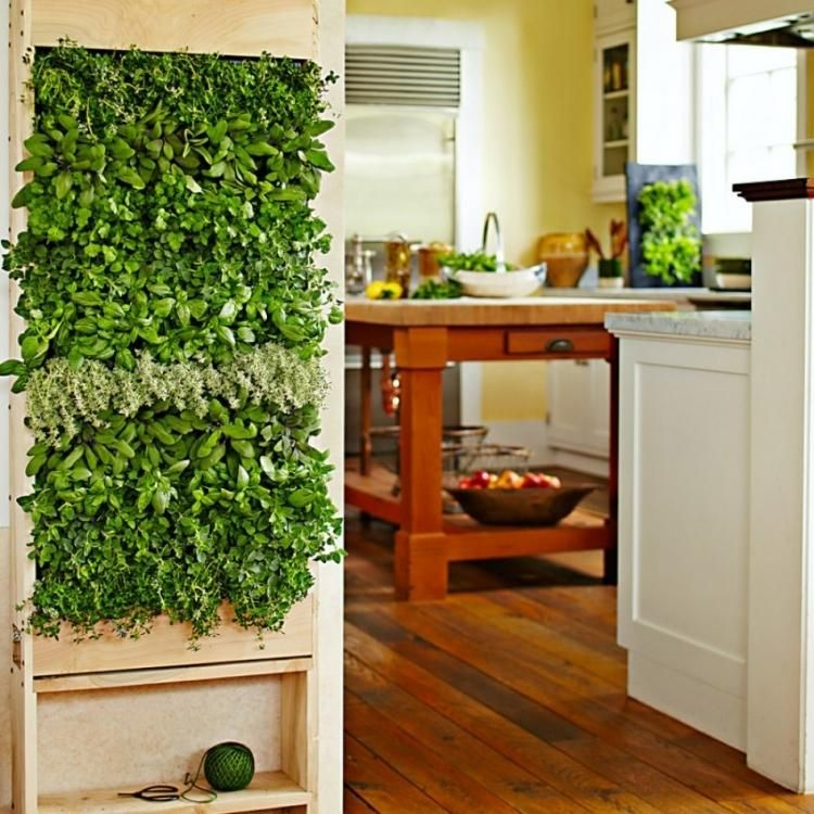 Mur végétal intérieur en 80 idées pour la maison écologique moderne - mur en bois interieur
