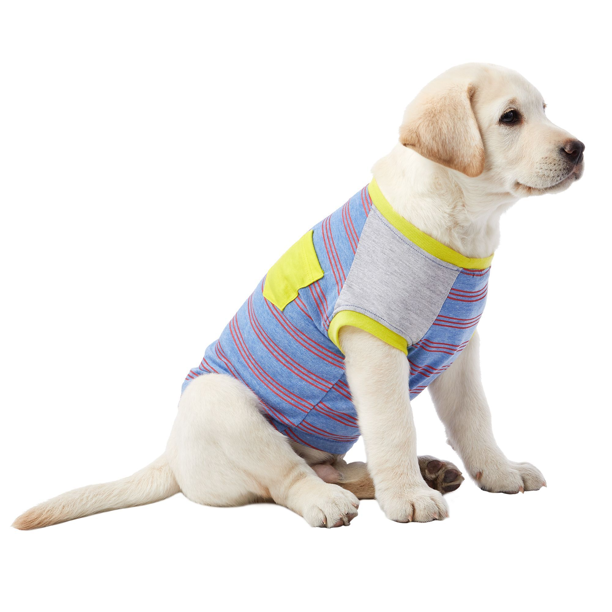 Top Paw Pocket Striped Pet Tee size Large, blue/wash in