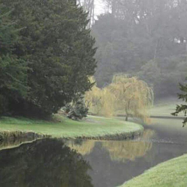 Studley Royal | Garden design, Photo, Studley