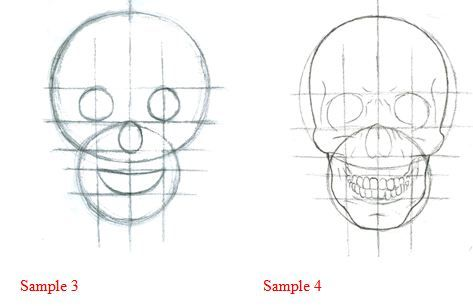How to draw a skull   Tutorials   Drawings, Art drawings ...