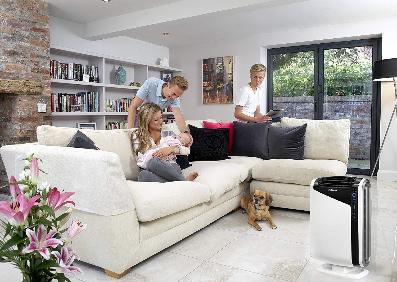 AeraMax 300 Large Room Air Purifier Mold Room air