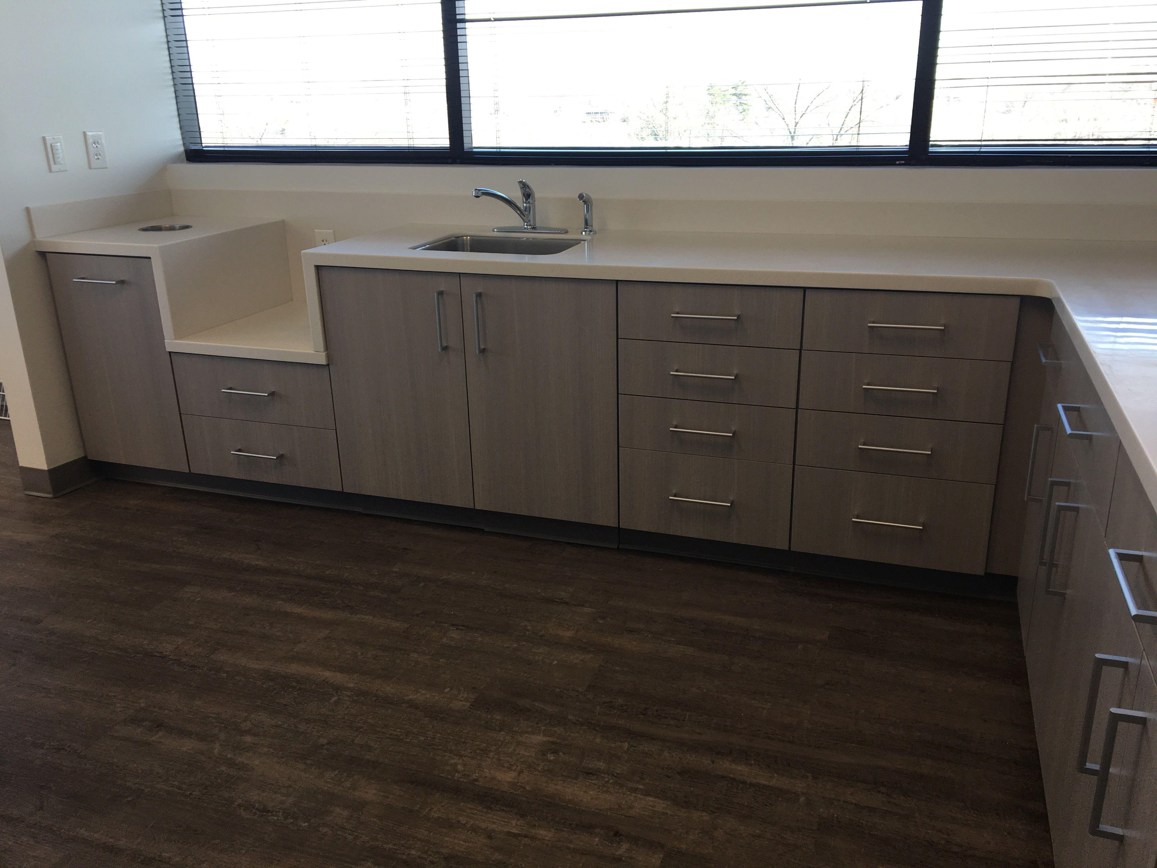 office countertops. Corian Linen Atlantis Dentistry Office Solid Surface Counter Tops | Carolina Custom Surfaces Countertops