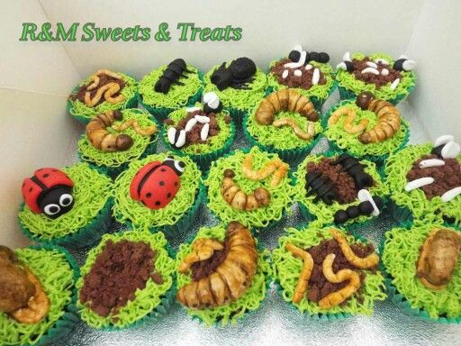Edible fondant bugs on cupcakes with grass and biscuit for dirt