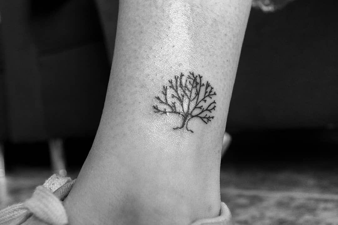 Otro Pequeno Desarrollado Con Carino Arbol De La Vida Tattoo Blackwork Blackworker Arbol De La Vida Tatuaje Arbol De La Vida Tatuaje Del Arbol De La Vida