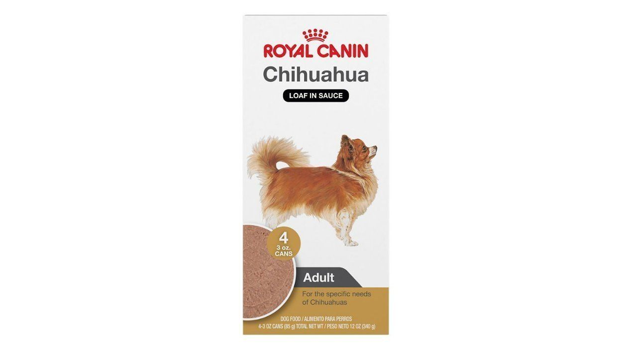 5 Best Wet Dog Foods For Chihuahuas 5 Best Wet Dog Foods For