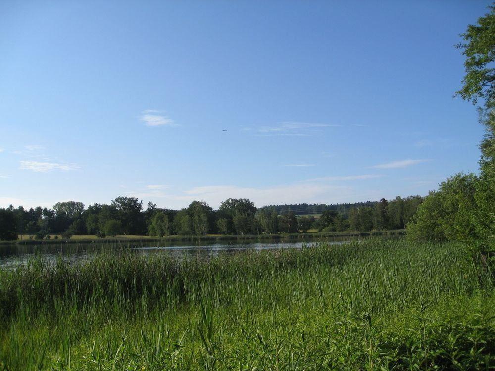 Besuchen Sie Tante Ida S Neue Ferienwohnungen In Lindau Am Bodensee Mit Einzigartiger See Und Bergsi In 2020 Bodensee Ferienwohnung Ferienwohnung Ferienwohnung Buchen
