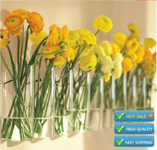 Cylinder-Clear-Glass-Wall-Hanging-Vase-Bottle-for-Plant-Flower-Room ...