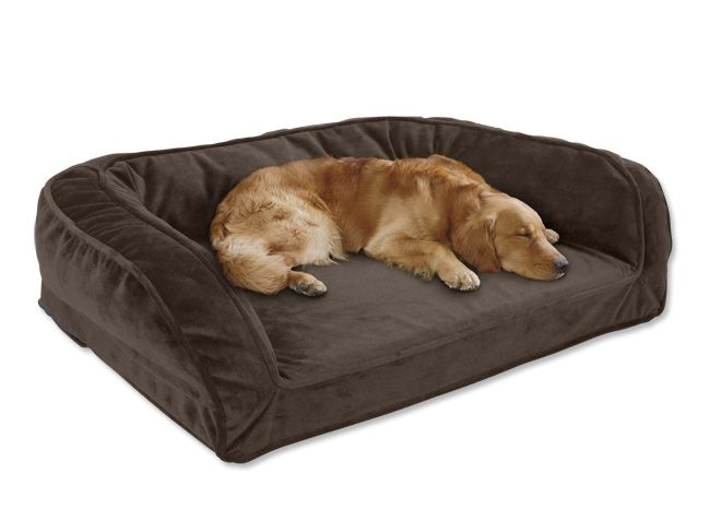 Orvis Tempur-Pedic Deep Dish Dog Bed / Large dogs 60-120 lbs. Cooper must have, but it is cheaper to just give him my couch!