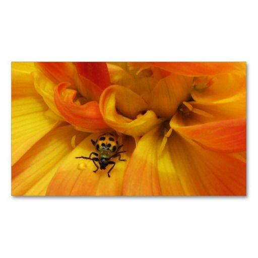 Garden Pest Control Business Card. Pest Control Business Cards   Business  Cards and Pest control
