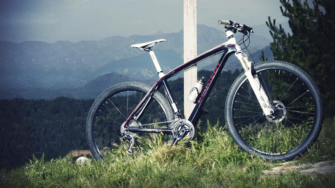 peugeot rsm produits explorer bikes peugeot bicycle e. Black Bedroom Furniture Sets. Home Design Ideas