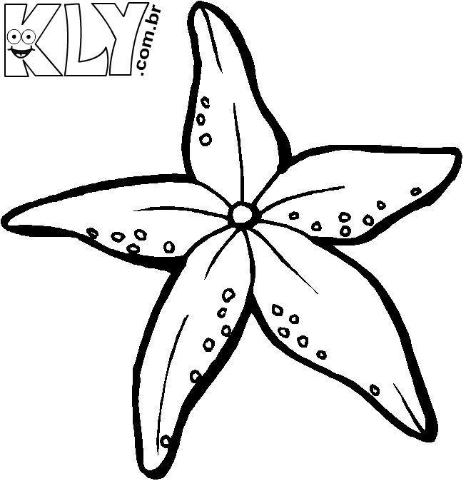 Estrela Do Mar Desenhos Para Colorir 1 Flores Para Colorir