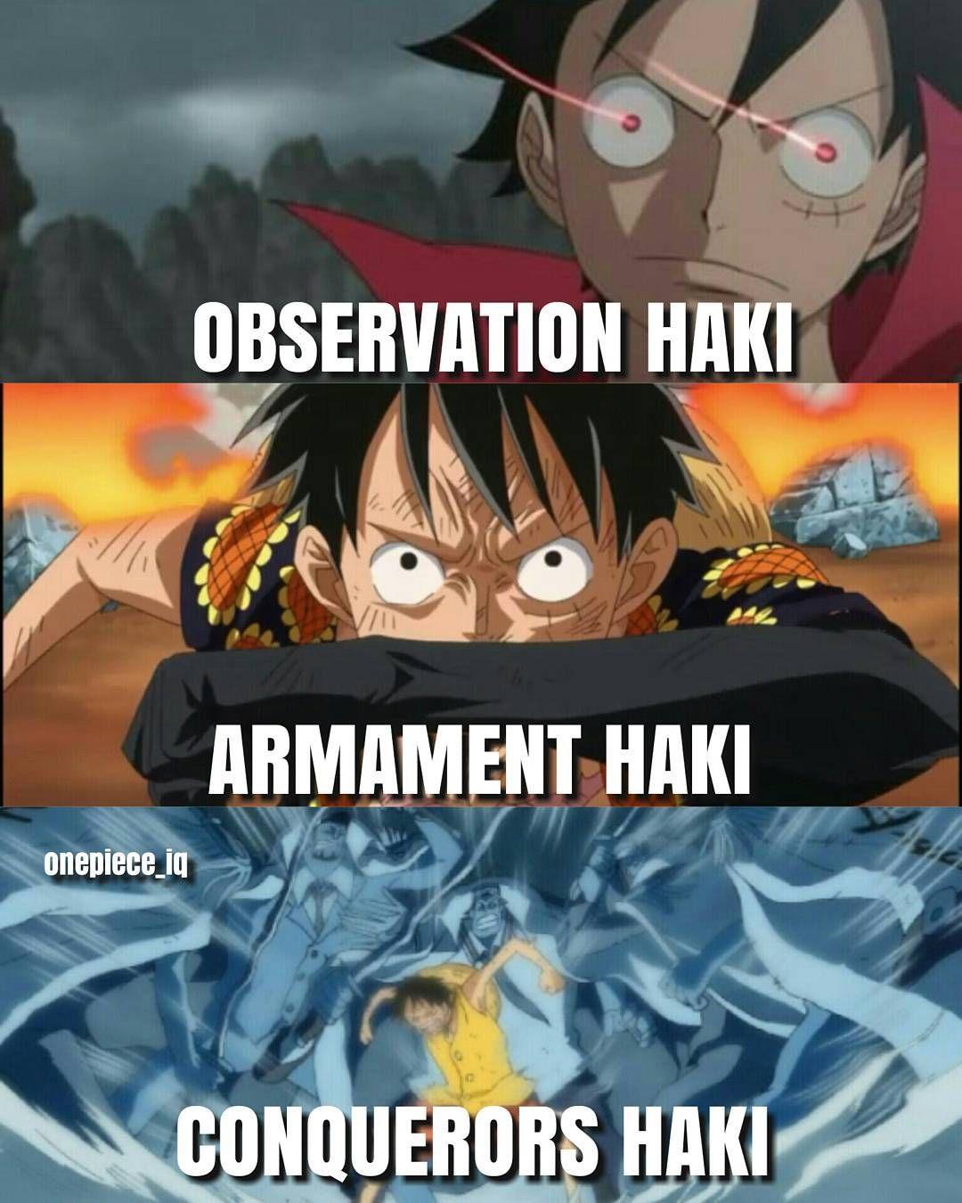 one piece zoro and sanji haki