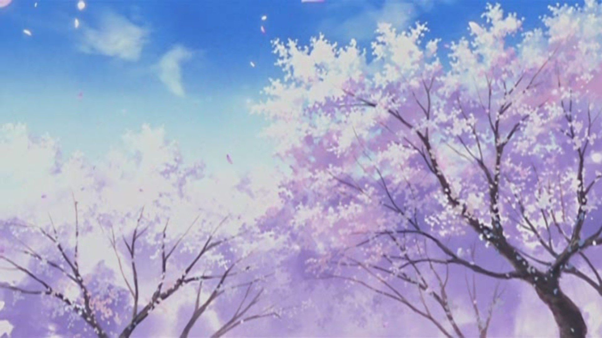 Anime scenery wallpapers 1080p with hd wallpaper kemecer - Anime cherry blossom wallpaper ...