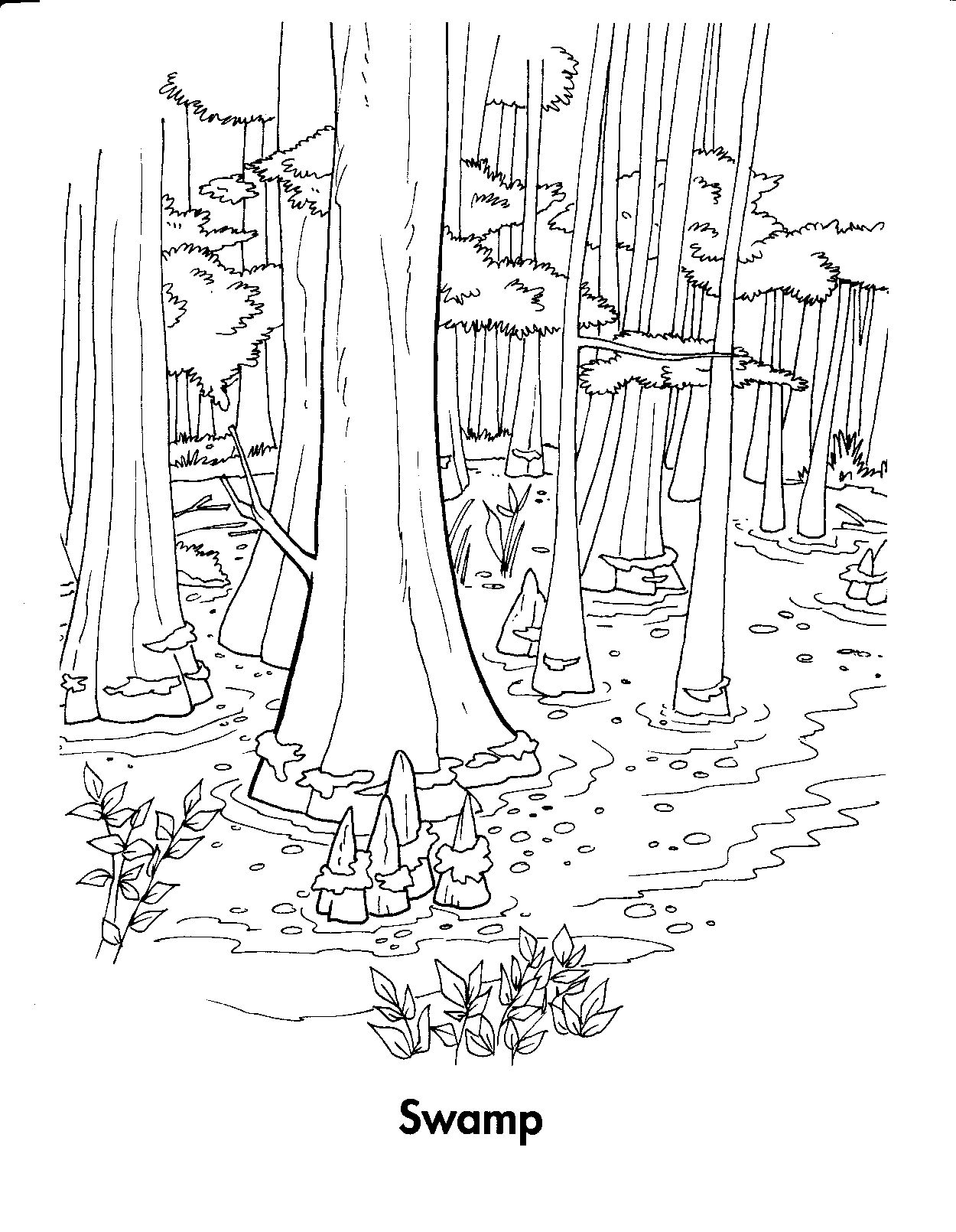 Forest Habitat Coloring Pages Animal Coloring Pages Coloring Pages Coloring Pictures