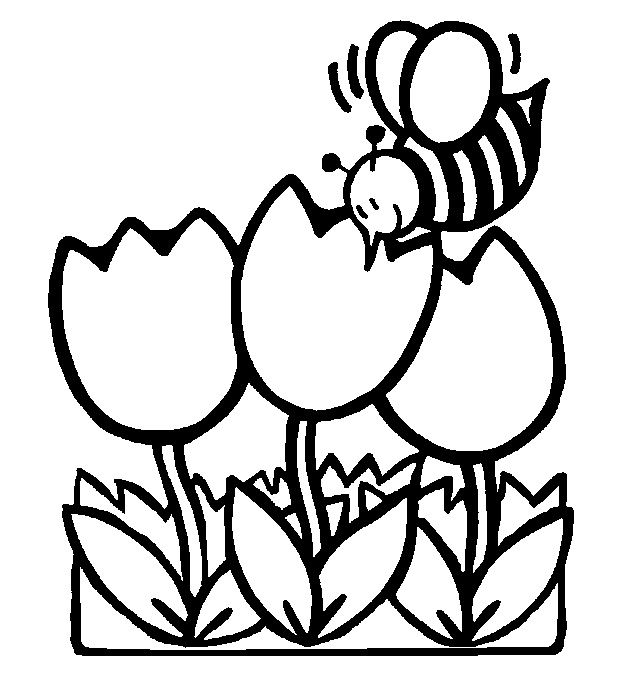 Free Printable Coloring For Kindergarten Bee Flowers Bee Coloring Pages Spring Coloring Pages Flower Coloring Pages Free preschool spring coloring sheets