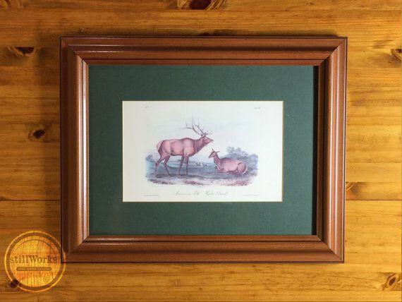 Vintage J.J. Audubon Framed American Elk Wapiti Deer Print