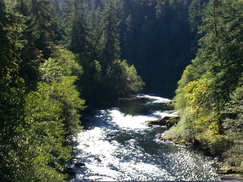 Near Roseburg Oregon