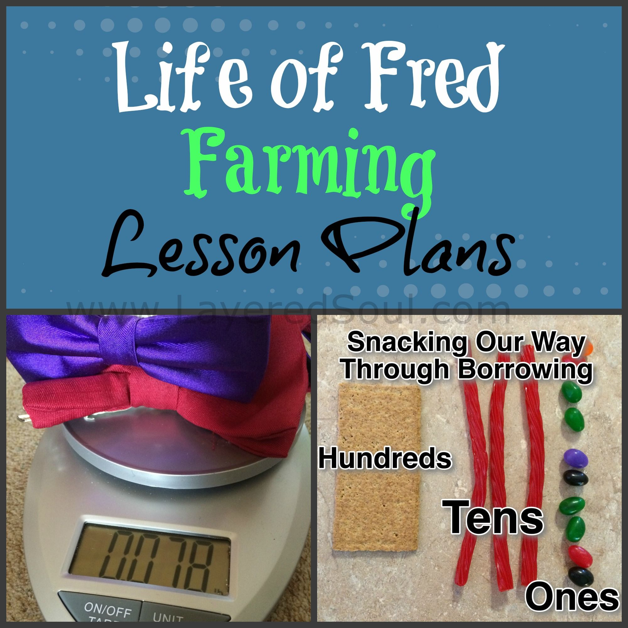 She has ideas for how to supplement Life of Fred for the first ...