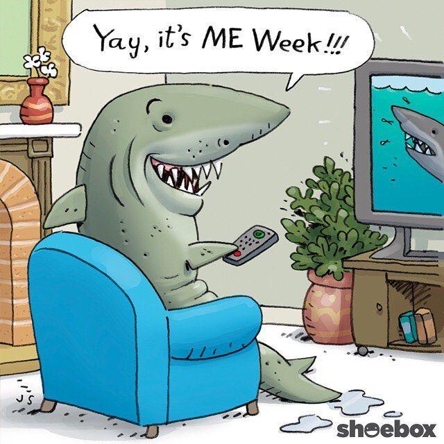 Yay It S Me Week Shark Sharks Shark Week Tv Sharknado Funny Lol Cartoon Ocean Illustratio Funny Cartoons Jokes Funny Jokes For Kids Sharks Funny