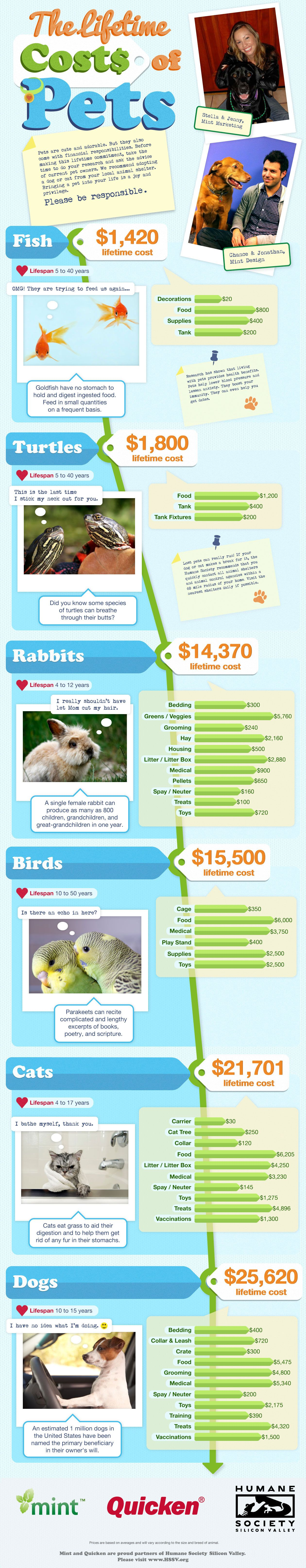 Infographic The Lifetime Costs Of Pets Animal Infographic Pet Ownership Pet Care Tips