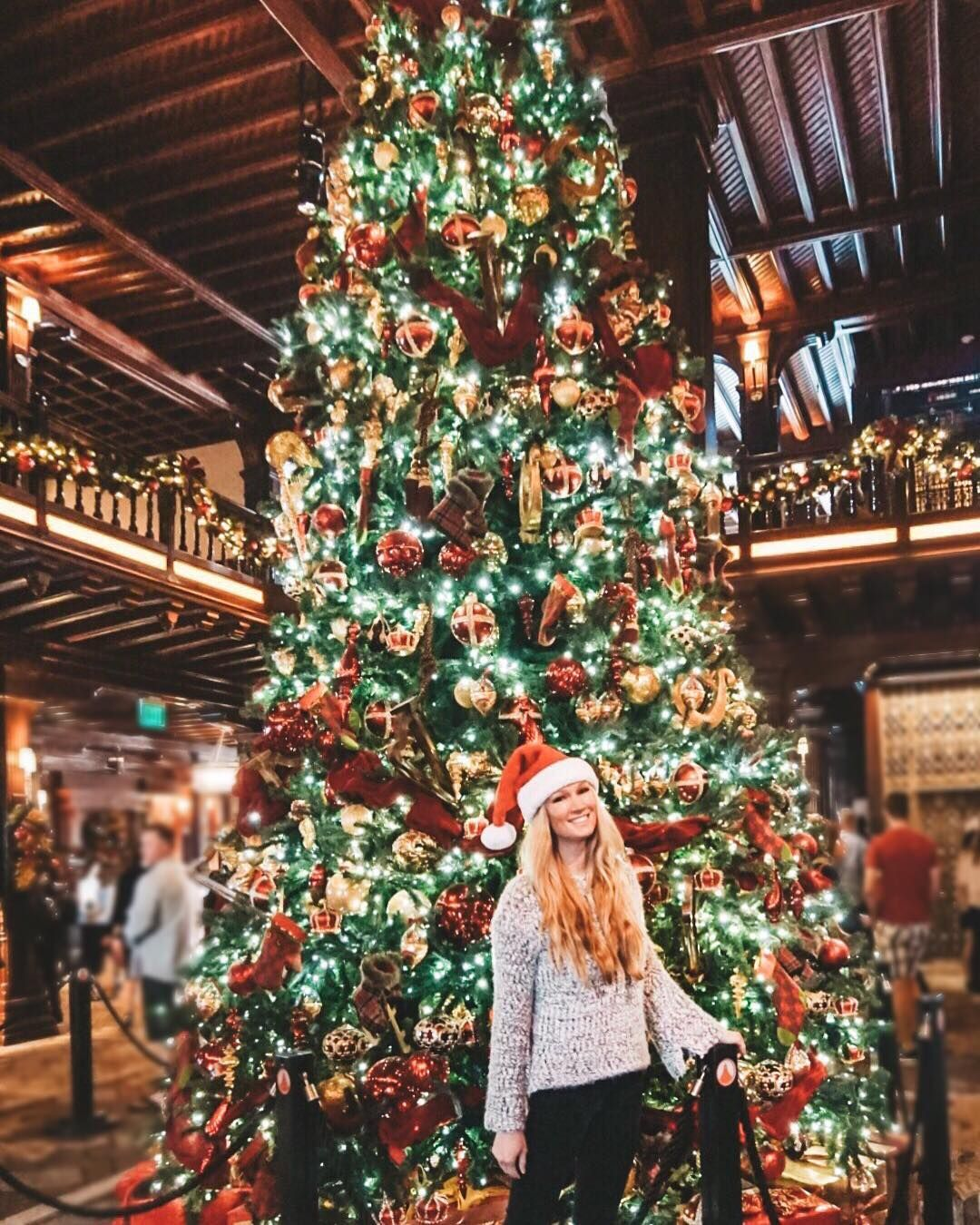 Merry Christmas From The Hotel Delcoronado This Iconic Hotel Has Been Around Since The Year 1888 And Is On In 2020 A Christmas Story Outdoor Ice Skating Ocean View