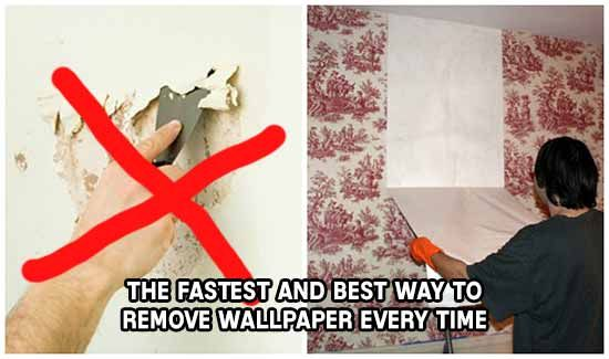The Fastest And Best Way To Remove Wallpaper Every Time