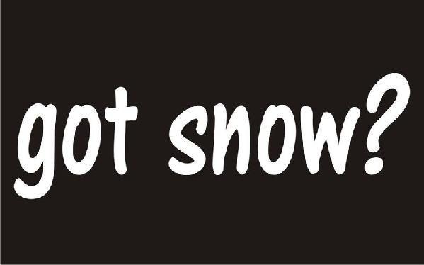 New Custom Screen Printed Tshirt  Got Snow?