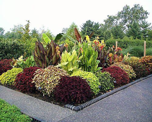 Elegant Flowers Garden