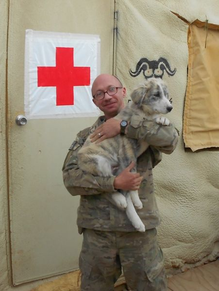 Special pup to an awesome vet.  Help make his Veteran's Day awesome and help bring Chuck home!