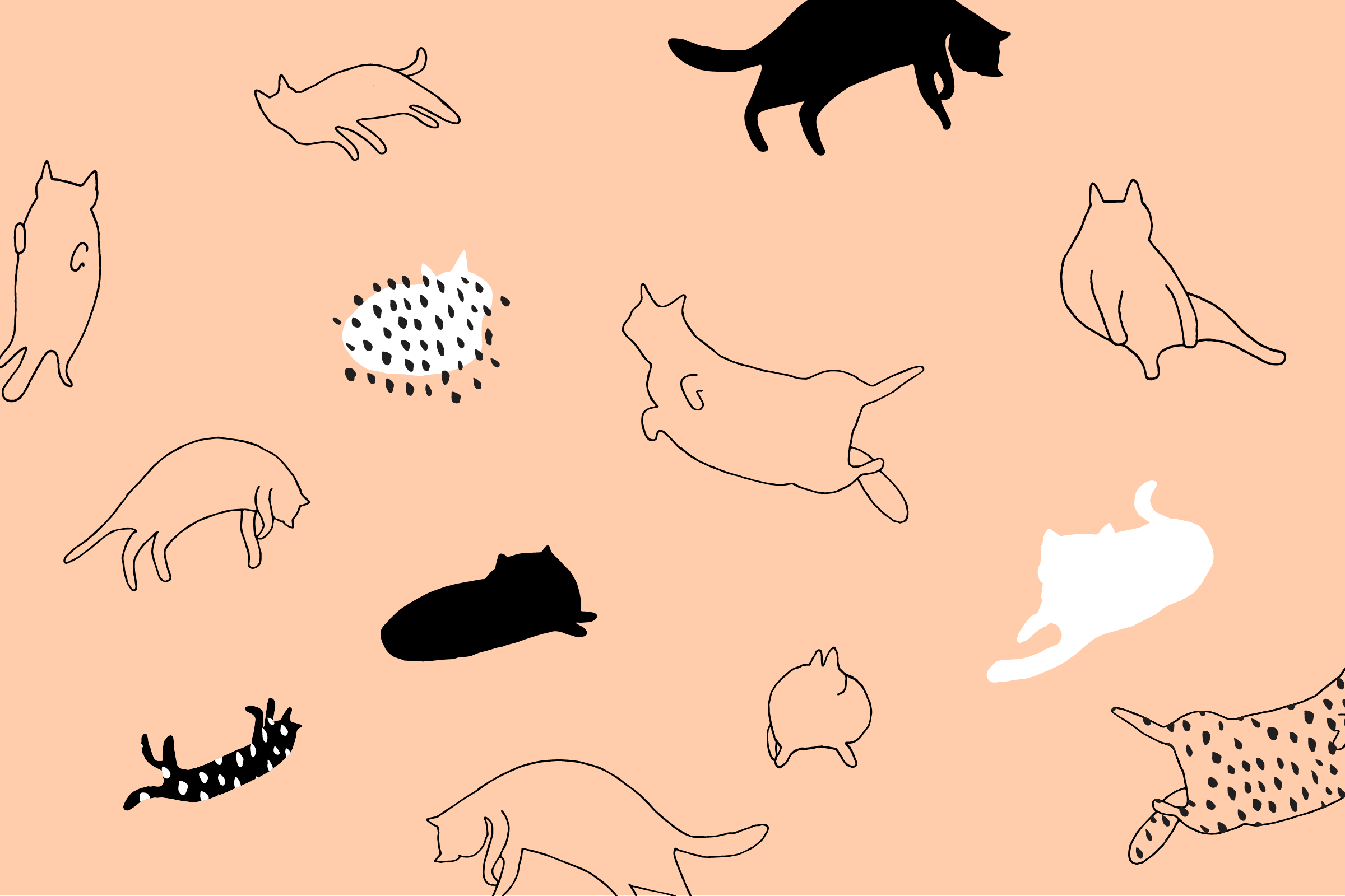 Cartoon Cat Desktop Wallpapers Top Free Cartoon Cat Desktop Backgrounds Wa Desktop Wallpaper Art Cute Desktop Wallpaper Laptop Wallpaper Desktop Wallpapers