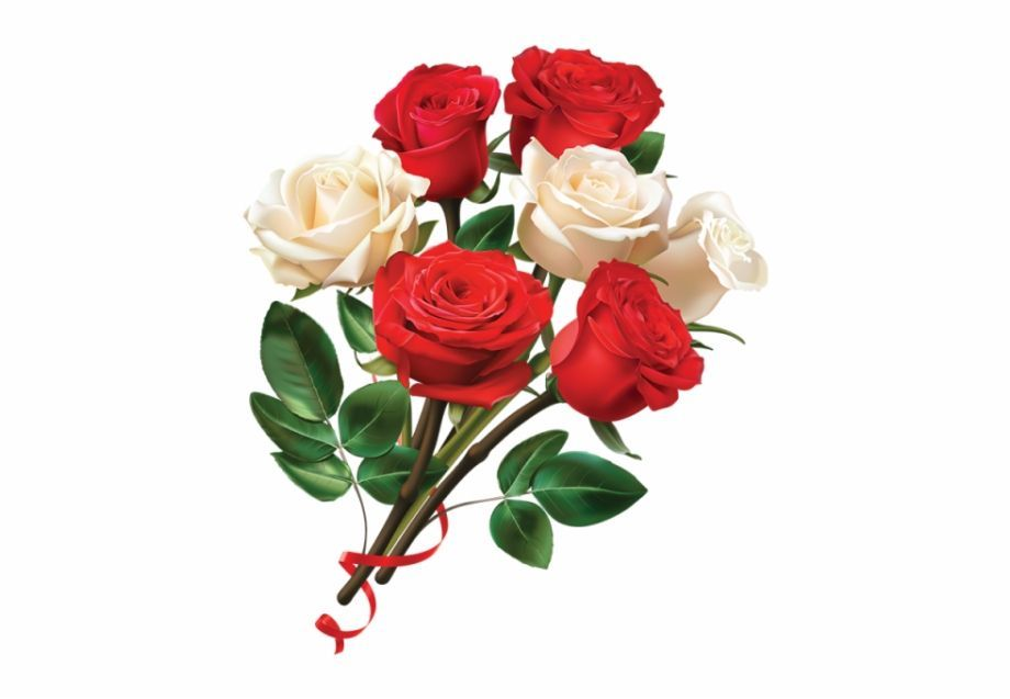 Awesome Rose Flower Png Photo And Description Awesome Description Flower Photo Png Rose In 2020 Rose Flower Png Rose Flower Red Rose Flower