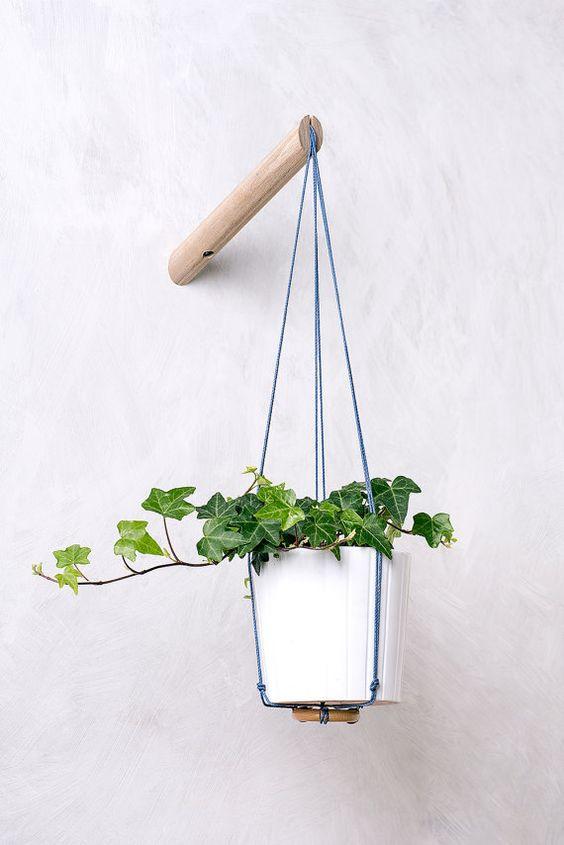Diy Indoor Hanging Plants Decor