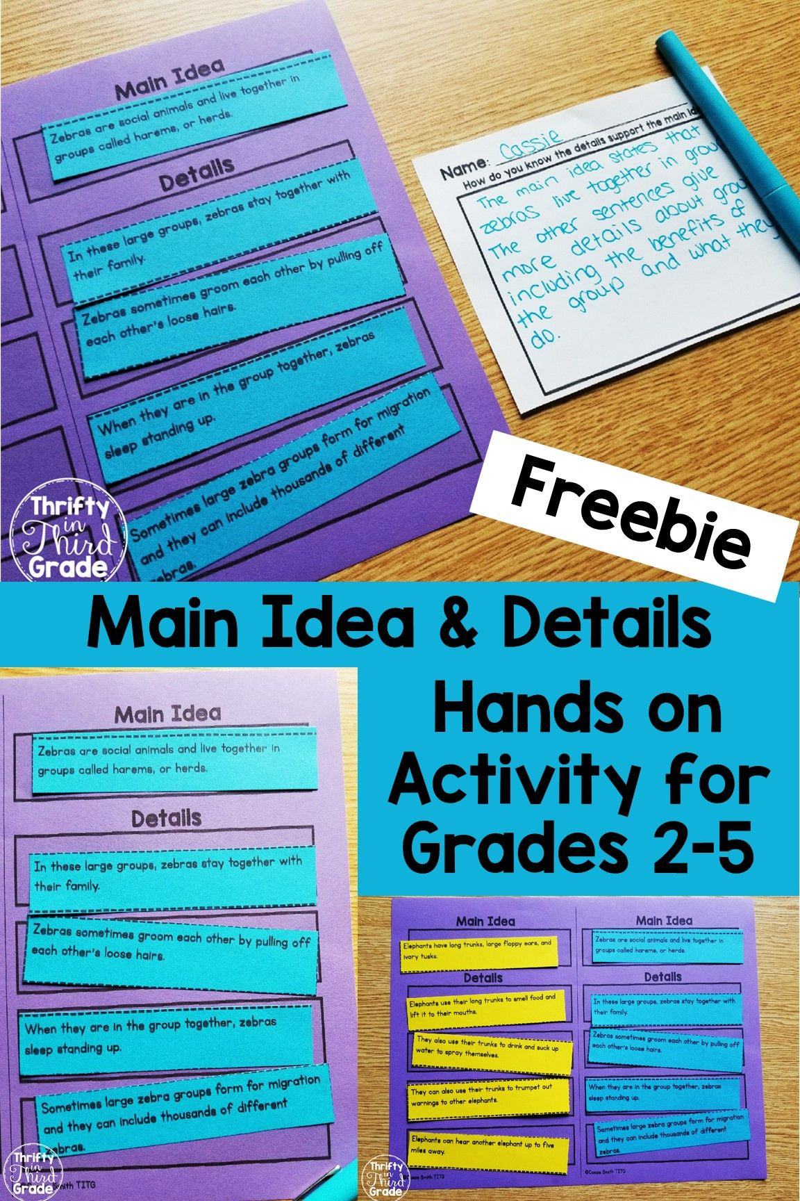 Main Idea And Details Sentence Sort