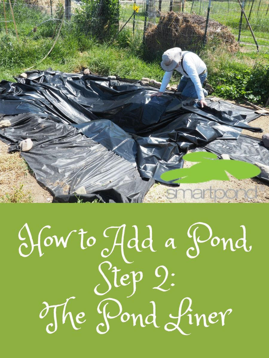 How to Add a Pond, Step Two – The Pond Liner #landscapeplans