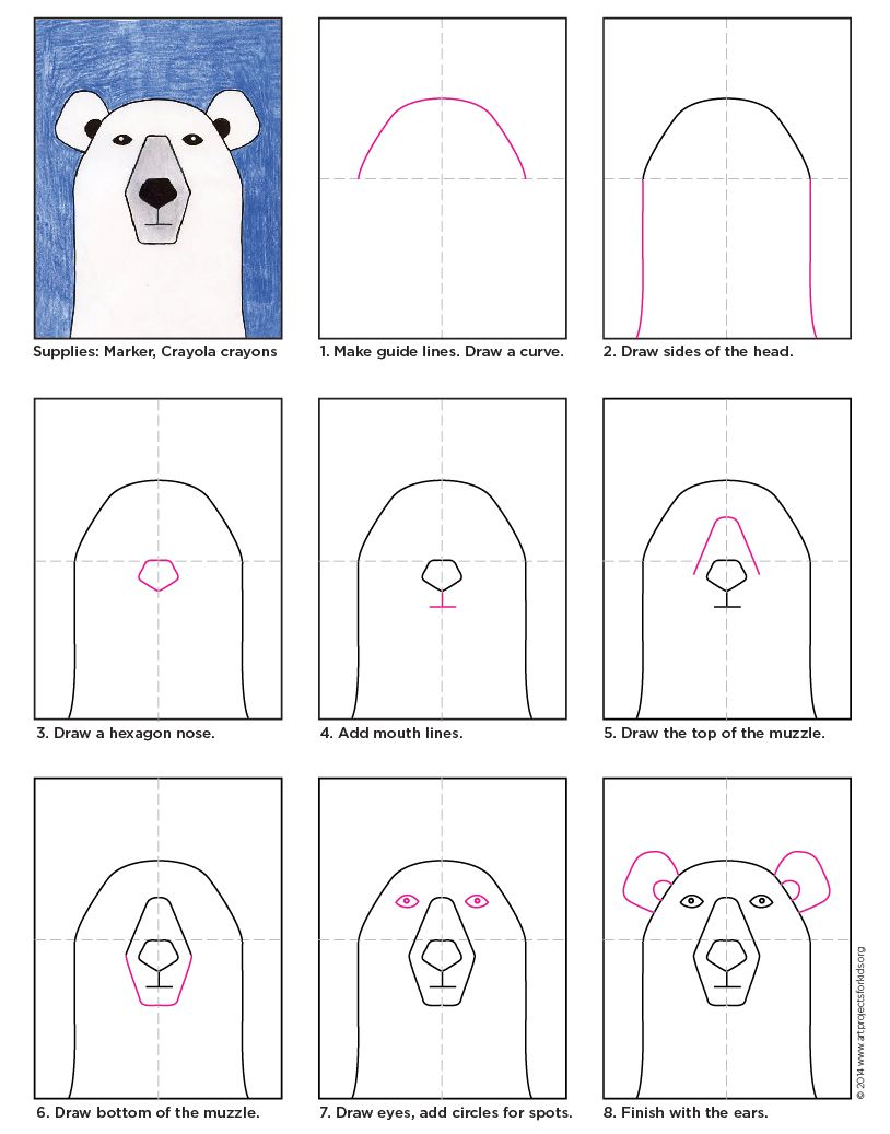 How to draw a polar bear face step by step
