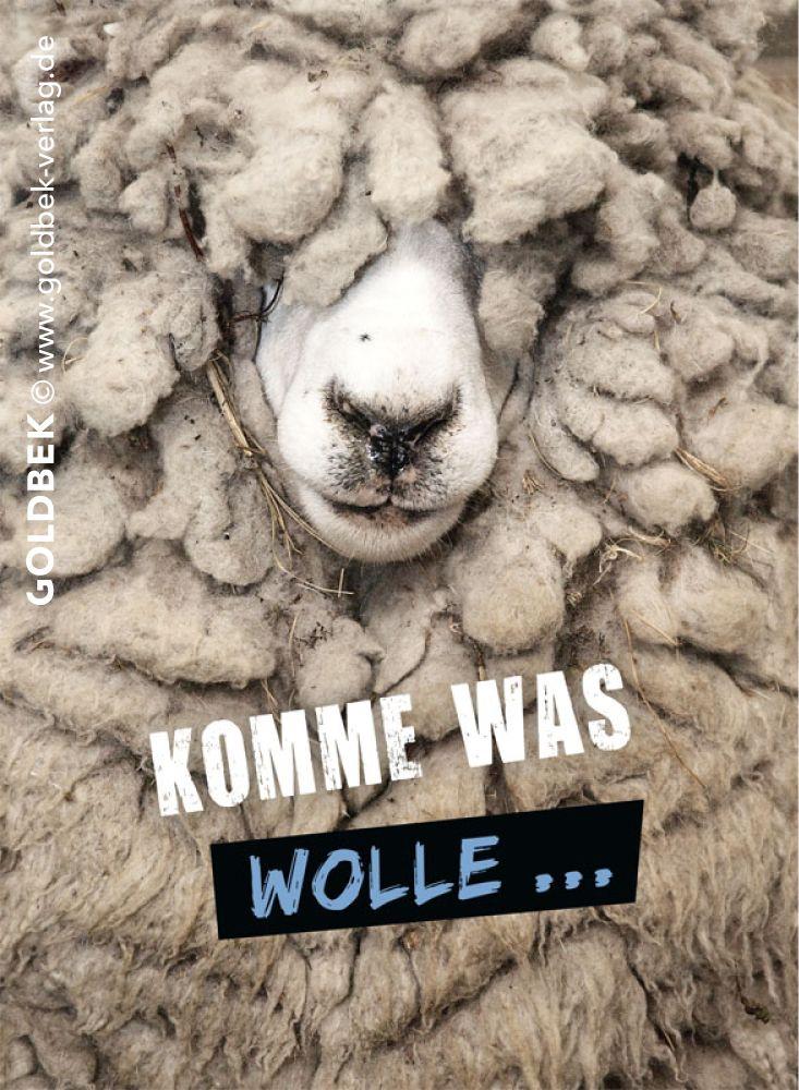 Postkarten - Humor. Komme was wolle ...