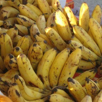 Beneficios Da Banana Que Voce Nao Conhece Beneficios Da Banana