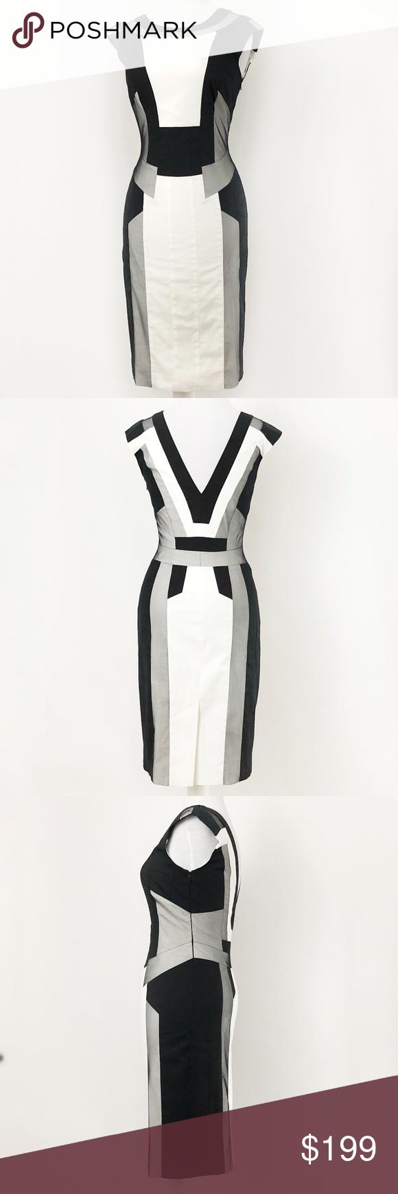 ec109c56c8 karen millen • graphic mesh panel pencil dress 4•6 Boutique