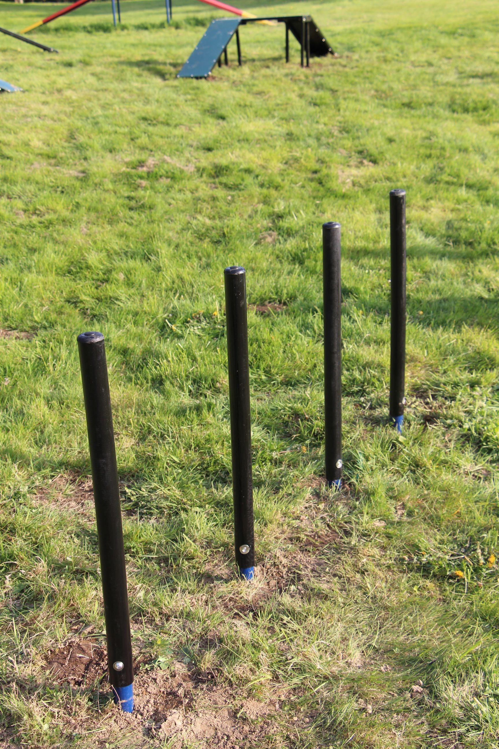 Sheltie Shimmy Poles - Set of 4 flexible and durable weave posts, essential for all dog parks.
