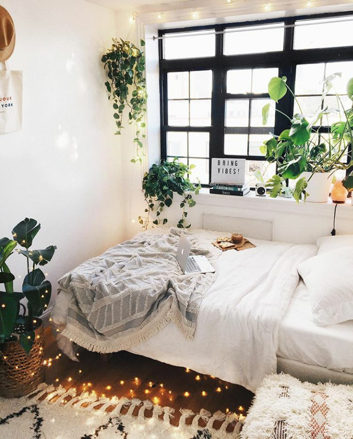A Guide To Using Pinterest For Home Decor Ideas: Cozy Bedroom Filled With Plants