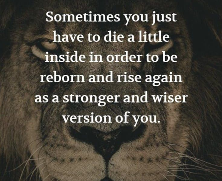 24 Quotes About Strength Family 4 Struggle Quotes Life Struggle Quotes Quotes About Strength In Hard Times