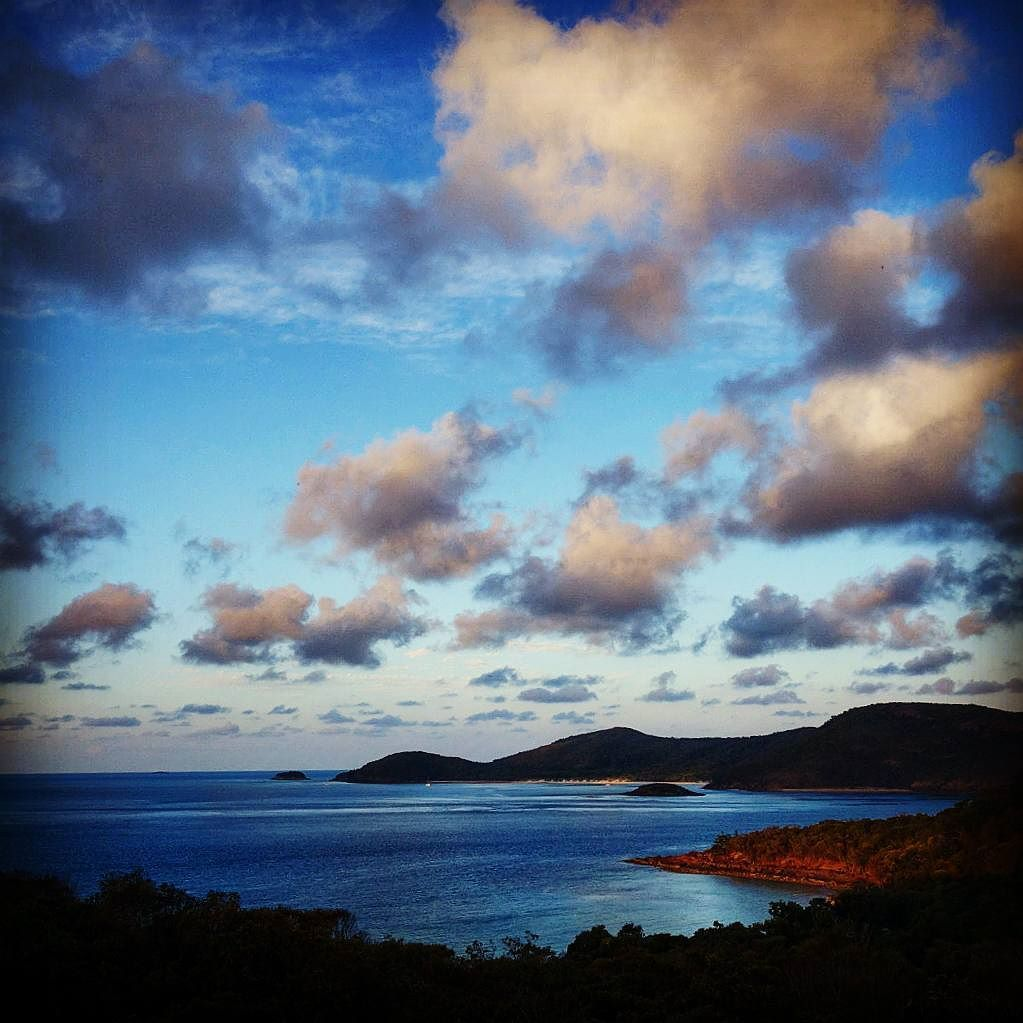 Spent two nights #camping with the #wallabies at Whitsunday Island #Australia - some of the most #beautiful #scenery in the #world. The #tranquility peaked in the mornings n eves after the day #trippers departed. by sbcondor http://ift.tt/1UokkV2