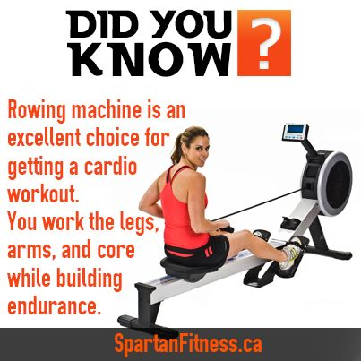 rowing machine is an excellent choice for getting a cardio