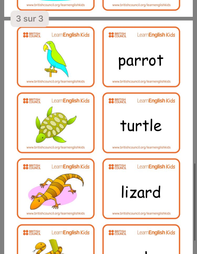 Pin by Ophy on Boulot Kids, Flashcards, Learning