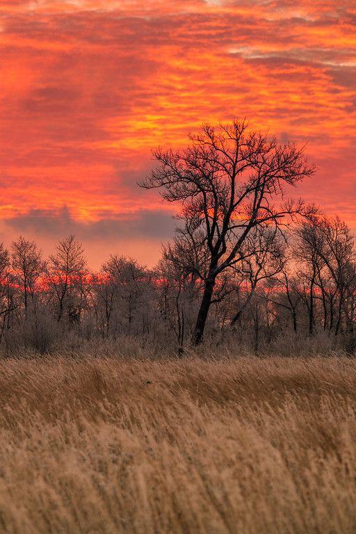 #sunset #photo