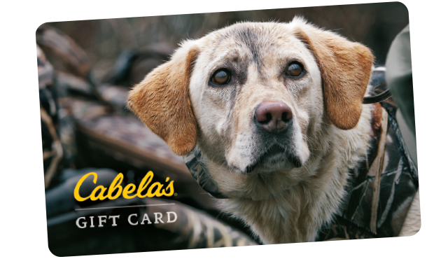 Cabela\'s Gift Card - the perfect present for Tyler | Willingham Wish ...