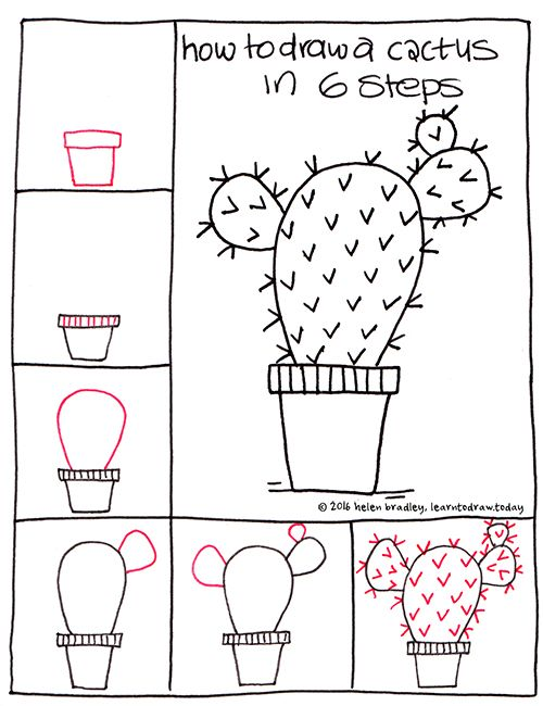 Learn to draw a cactus in 6 steps learn to draw for How to draw doodles step by step