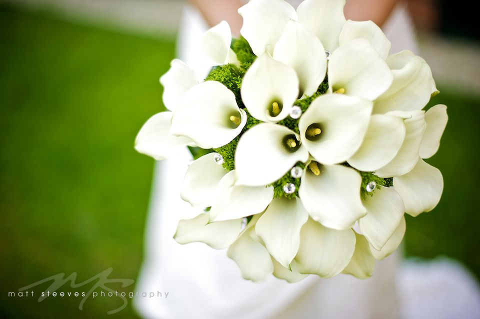 green wedding bouquets wedding flowers fort myers white green
